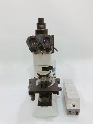 Olympus BX41  金相顯微鏡