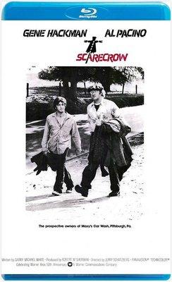 【藍光電影】流浪奇男子 / 同是天涯淪落人 / 稻草人 SCARECROW (1973)