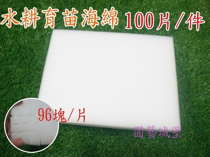【園藝城堡】水耕育苗海綿 (100片/件) 播種育苗專用海綿 泡綿