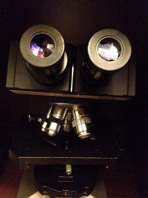 Olympus bh2 顯微鏡