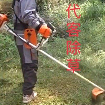 台北代客除草