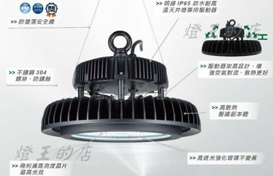 【燈王的店】舞光 LED 200W 天井燈 防水型(附掛勾壁板.防墜繩) ☆ LED-HIBAY200DR6 適用10M