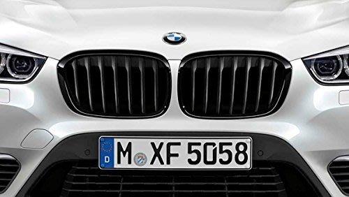 【樂駒】 BMW 原廠 F45 F46 2AT 2GT M Performance 高光澤 黑水箱罩 黑鼻頭 外觀 套件