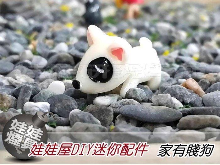 ㊣娃娃研究學苑㊣滿499元免運費 創意DIY 娃娃屋DIY迷你配件 家有賤狗 單售價(DIY165)