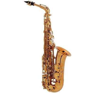 §唐川音樂§【Selmer REFERENCE 54 Saxophone Alto 中音 薩克斯風 】(法國)