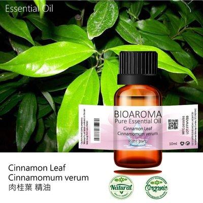 【芳香療網】Cinnamon Bark - Cinnamomum zeylanicum 肉桂皮精油 10ml