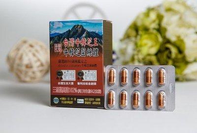 【台灣牛樟芝王】❤牛樟芝菌絲體膠囊食品◎全素 (三萜類可達野生牛樟芝的102.42%)並榮獲台、日、中、德共五張專利認證