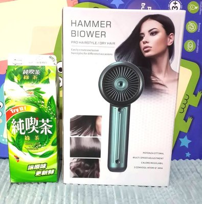 Negative Ion Hammer Blower Hair Dryer Hot And Cold Wind gift