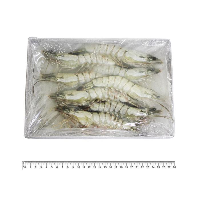 冷凍草蝦 280g±5% 8尾 海草蝦 冷凍海鮮
