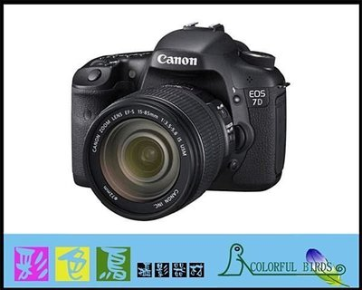 彩色鳥 (相機出 鏡頭出租) Canon EOS 7D + Canon EF 100-400mm f4.5-5.6 L