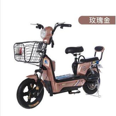 機車 電動車踏板車成人電動自行車朗馬電動車電瓶電動車   黛尼时尚精品