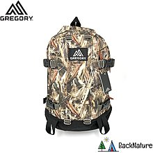 Gregory All Day Backpack Drt Camo 22L  經典書包 潮流背囊