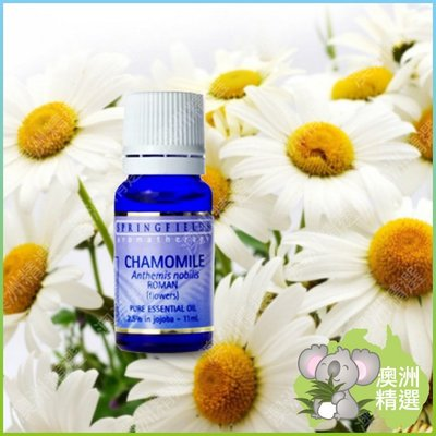 【澳洲精選】SPRINGFIELDS Chamomile Oil 2.5% in Jojoba 羅馬洋甘菊精油11ml