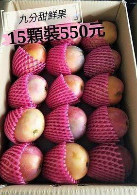 愛文芒果15顆裝
