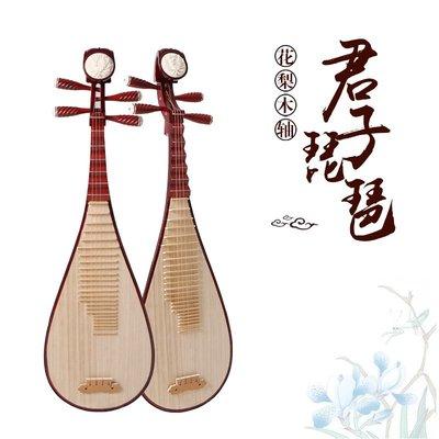 【民族乐器】花梨軸琵琶雕花琵琶樂器成人演奏民族樂器 H4050D