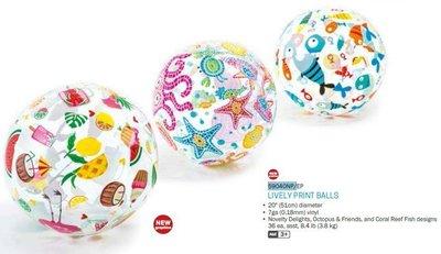 美國INTEX 59040 沙灘球 兒童玩具球 海灘球 戲水 戲水球 遊戲球 充氣球 夏天 玩水必備 新北市