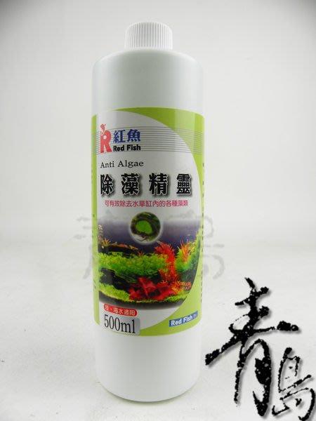 。。。青島水族。。。台灣Red Fish紅魚---除藻精靈(強力推薦)==500ml(買2送1)免運費