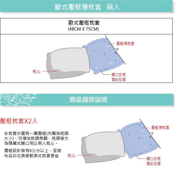 【OLIVIA 】DR1011 伊芙琳 歐式薄枕套【兩入】 300織 天絲™萊賽爾  台灣製