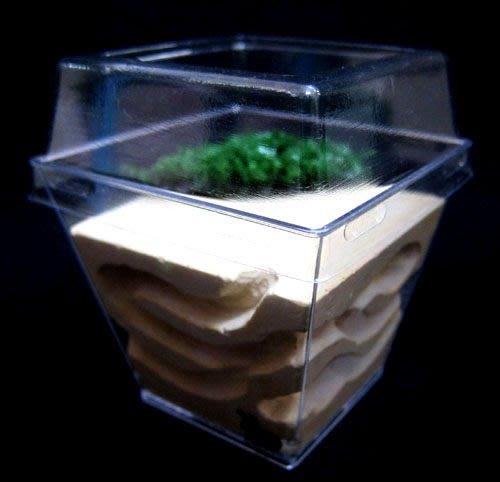 【螞蟻的家】晶鑽型迷你飼養巢-圓弧型草皮造景,螞蟻生態觀察.養螞蟻,買螞蟻,賣螞蟻