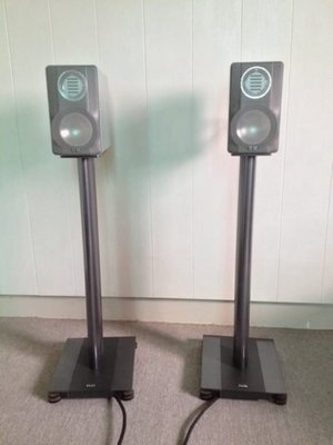 ELAC 310 Jubilee Edition+LS70stand