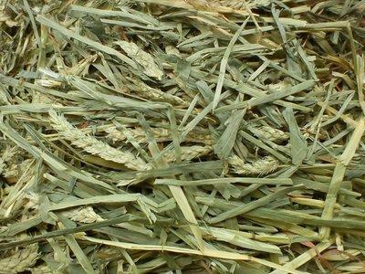 【新寵兒樂園】提摩西,甜燕麥,苜蓿,百慕達,草磚,綜合除臭飼料(試吃包只要一元)