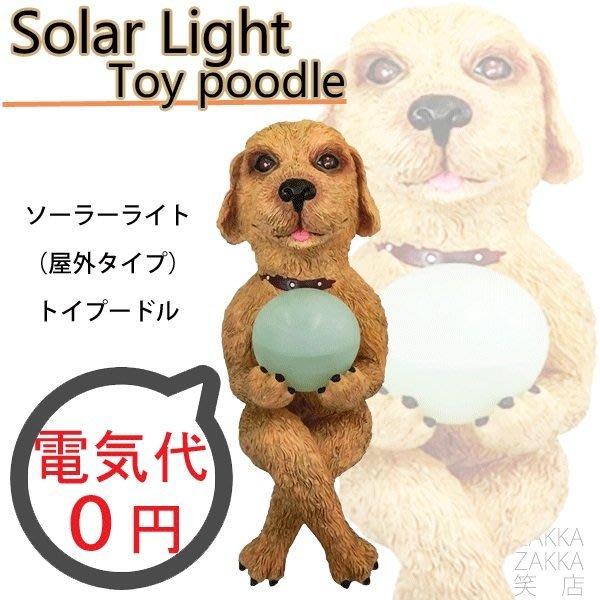(I LOVE樂多)少見商品-小狗太陽能小夜燈moai 摩艾實用 裝置藝術 送人自用兩相宜