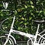 ☆天才老爸☆←台灣【OYAMA】GOD HORSE神馬 M100R1←兒童 折疊 腳踏車 滑行車 露營 遊戲 器材 批發
