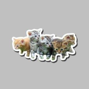 【SPSP】小貓 貓群 貓咪 貓 寵物 3M貼紙 防水貼紙 機車貼紙 汽車貼紙 旅行箱貼紙 動物貼紙 車身貼紙