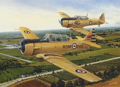 美國進口拼圖 CH.Lance Russwurm 戰鬥飛機.1000片拼圖,51714