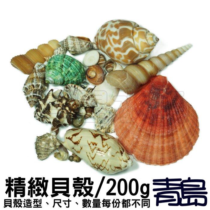 PN。。。青島水族。。。S00009魚缸造景底砂 水晶系列 彩色水晶琉璃砂 水草缸 流水盆==精緻貝殼200g買二送一