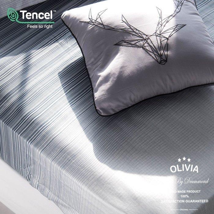 【OLIVIA 】DR8006 亞伯特 標準單人床包歐式枕套組【不含被套】300織天絲™萊賽爾 台灣製