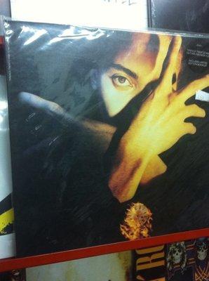 黑膠LP唱片 保存如新 Terence Trent D'arby / neither fish no flesh