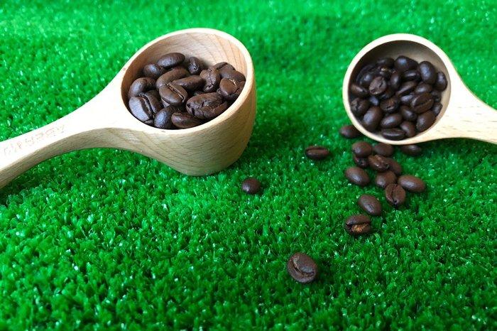 竹藝坊-SC03木頭咖啡杓/咖啡匙/奶粉杓/原本咖啡匙/咖啡豆專用