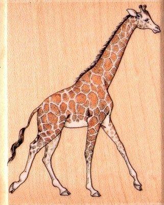 陽光一品DIY卡片印章專賣店~~ RS木頭印章~~ 長頸鹿 ~~#A825E #~美國製絕版品