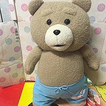 TED Teddy 大size 公仔 景品