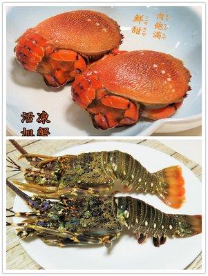 中秋烤肉伴手禮 任選2件免運費 龍蝦 VS 旭蟹