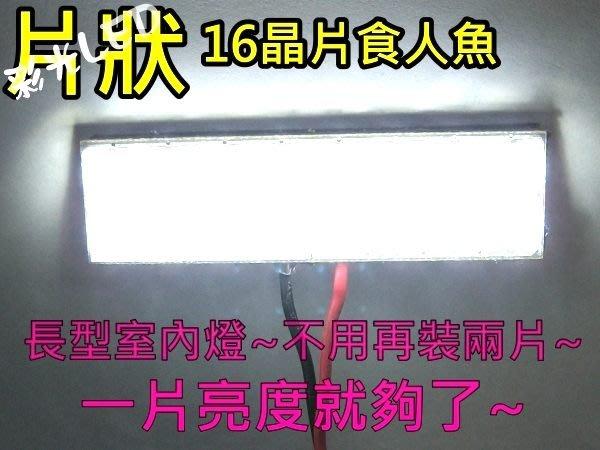 彩光 LED室內燈 36mm 16食人魚 LED牌照燈 LED情境燈 LED車燈泡 LED閱讀燈 T10 36mm 42mm
