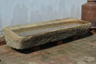 台灣砂岩斜角大豬槽 長達1米2~幸子老鋪