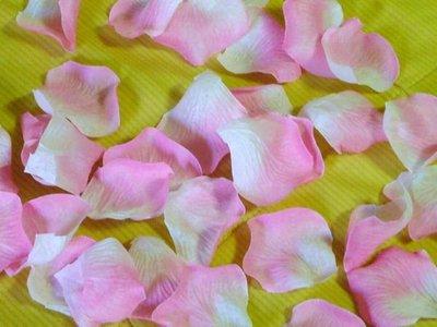 ☆命中注定☆玫瑰花瓣,灑花,婚禮佈置.二次進場,婚禮小物(5色)