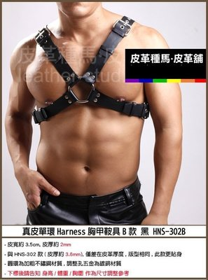 【OTOKO】Leather Stud皮革種馬:真皮單環Harness胸甲鞍具B款黑 HNS-302-B