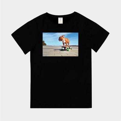 T365 MIT 親子 童裝 T恤 T-shirt 短T 狗 DOG 鬥牛犬 法鬥 french bulldog 滑板