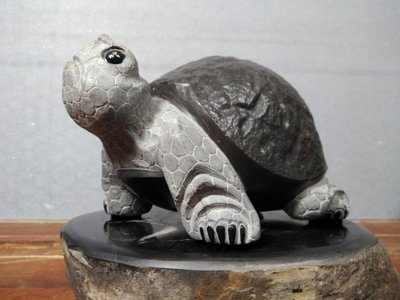 典藏林孟科-黃龜甲石皺皮平安龜