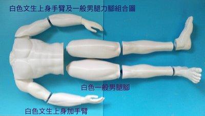 男用白色大腿+小腿+腳未上色素胚單支腿大小可接受訂製