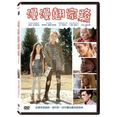 全新歐影《漫漫翹家路》DVD 金球獎最佳女主角 珍‧西摩兒 艾倫‧鮑絲汀