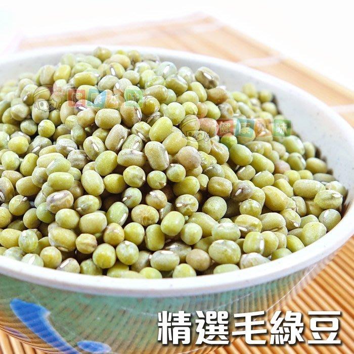 台灣精選毛綠豆500g [TW00079]健康本味▶超取滿399免運