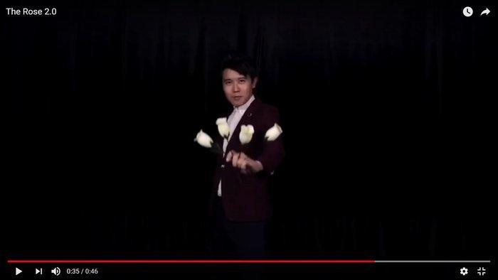 【天天魔法】【S1024W】正宗原廠~(白)玫瑰四變~The Rose 2.0 by Bond Lee(李澤邦作品)