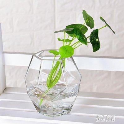 現代簡約玻璃小花瓶可愛透明辦公室綠蘿個性創意小號文藝小清新CY