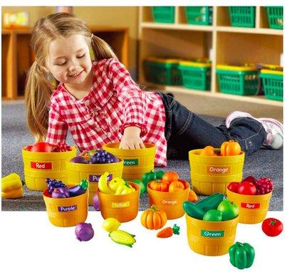 【晴晴百寶盒】美國進口 蔬菜農場 創意辦家家酒 可愛益智玩具 益智遊戲 送禮禮物禮品 創意寶寶早教益智遊戲 W410