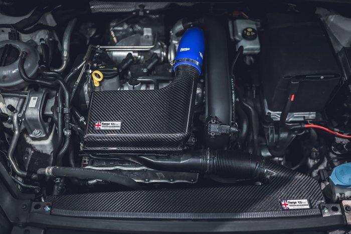 德朋國際 /FORGE 碳纖維 進氣套件 Volkswagen Golf  Varinat 1.4 實裝