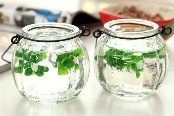 花器玻璃小花瓶懸掛瓶子透明創意花插簡約時尚壁掛花盆栽吊瓶_☆找好物FINDGOODS☆